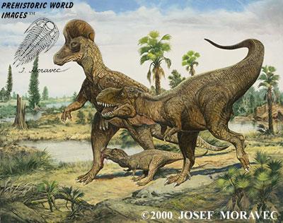 albertosaurus vs utahraptor scifiedcom