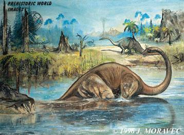 Diplodocus (88 ft long)