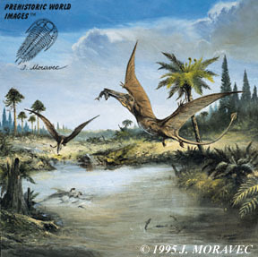 Rhamphorhynchus  (Pterosaur)