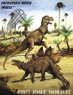 Ceratosaurus and Stegosaurus (20 ft tall)